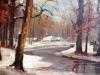 sneeuwbos 1