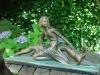 Jonge vrouw met hazenwindhond.